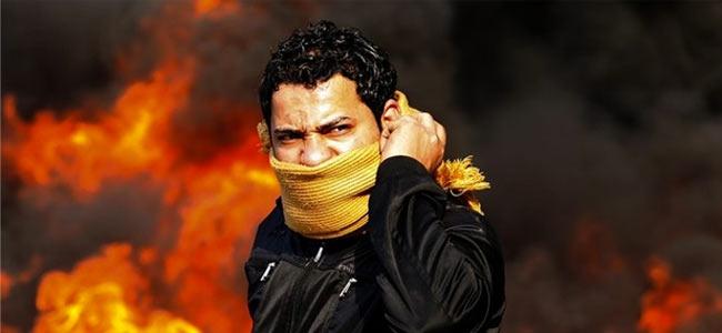 Египет украсят веб-камерами
