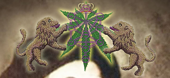cannabis-israeli