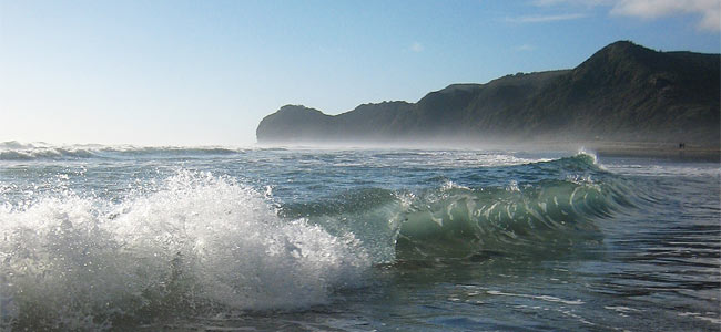 В Новой Зеландии англичанин утонул на мели, а француженку посадили за пьянство