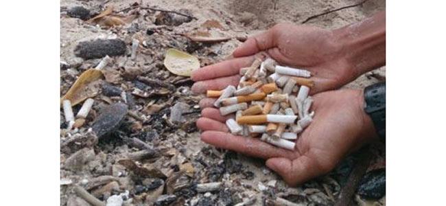 Симиланские острова из уголка нетронутой природы превращаются в пепельницу Азии