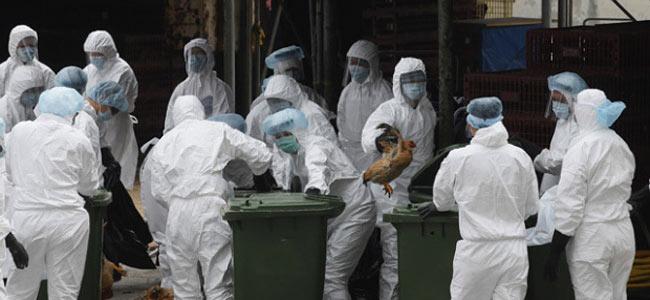 Школьник из Таиланда умер на экскурсии в Китае. Но это не птичий грипп