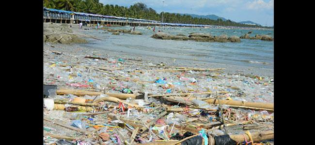 Тихий тайский курорт Банг Саен хоронит былой шарм под слоем мусора и мертвечины