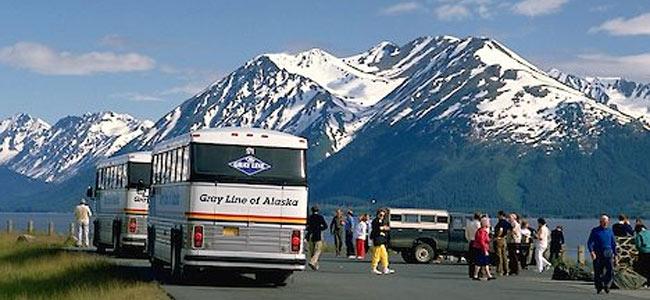 Труперы Аляски арестовали пьяного водителя автобуса, рисковавшего жизнями 46 туристов