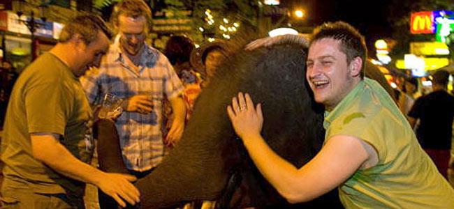 Топ 5 выходок пьяных туристов