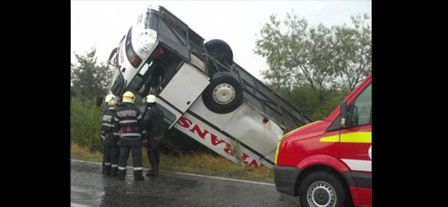 Из-за бродячей собаки в Румынии потерпел аварию автобус со словаками