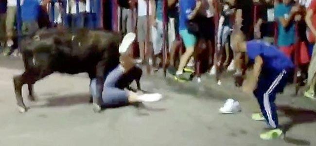 bull-attack