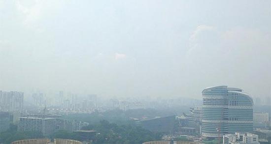 Сингапурская дымка фирменная