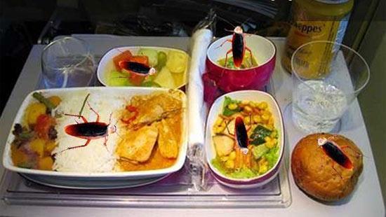 Тараканы в самолетной еде