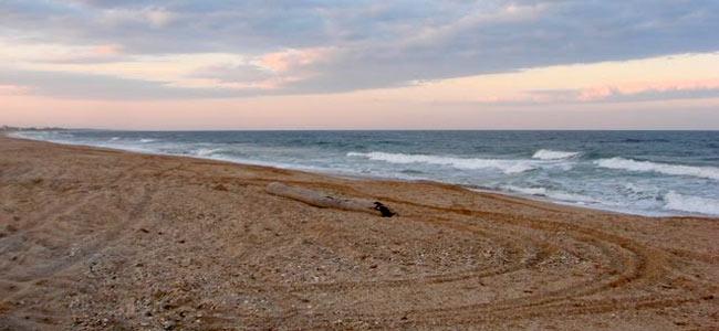 florida-beach-danger