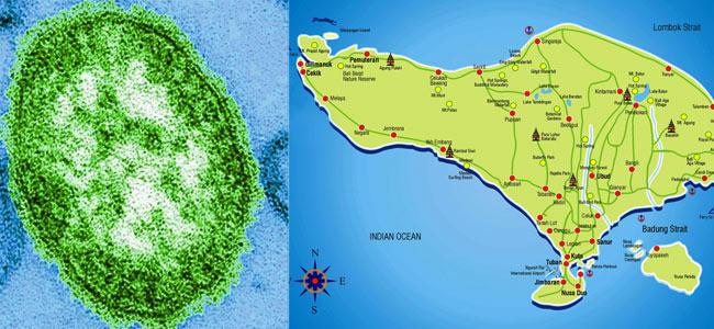 На Бали бушует корь. Семеро австралийских туристов привезли заразу домой