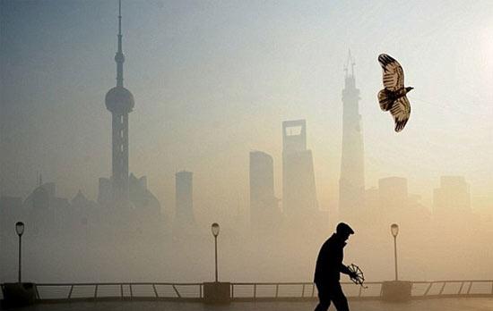 Страховка от смога
