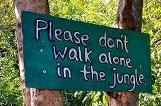 Кто гулять уходит в джунгли, тот самоубийца