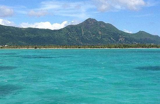 Тамарин, Маврикий