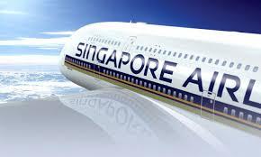 Новые стандарты нормы бесплатного провоза багажа на сингапурских авиалиниях
