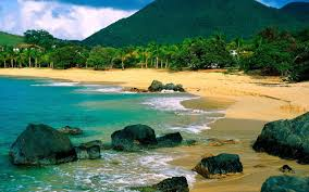 Канарские острова идеально подходят для встречи альтернативного Нового года
