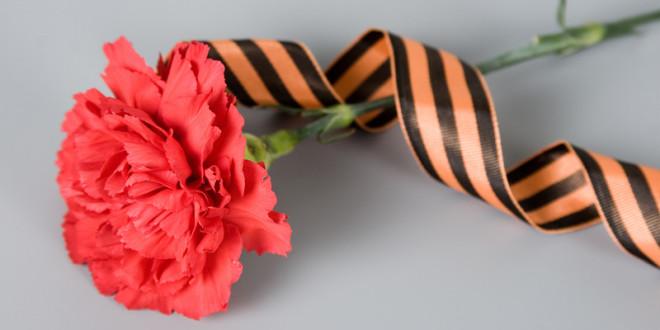 """Фестиваль """"Красная гвоздика"""" пройдет в Севастополе 26 февраля"""