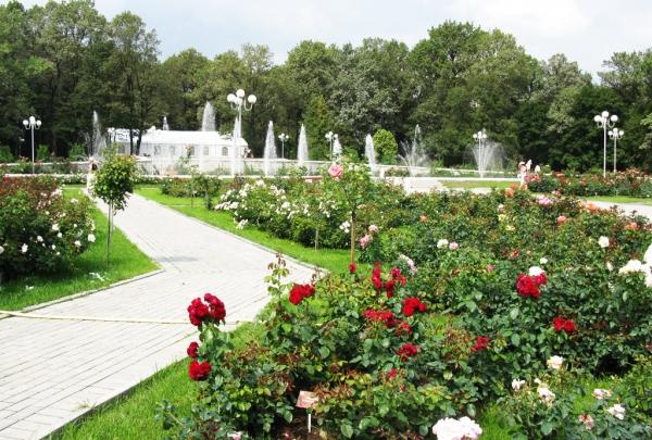 Парки в Москве готовят развлекательные программы для отзывчивых горожан