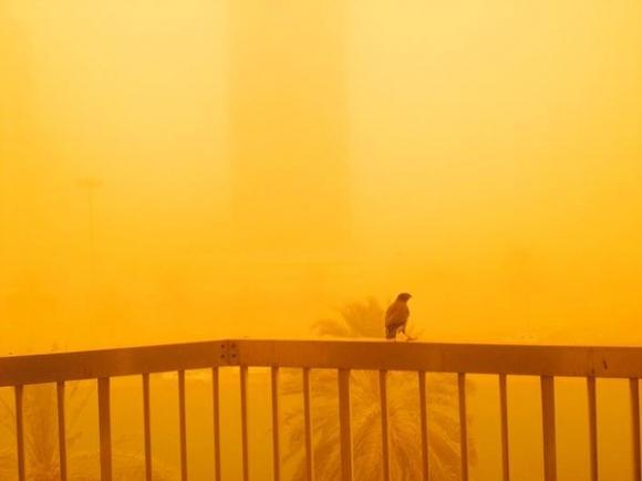 Эмираты. Песчаная буря продлится еще 2 дня