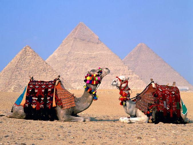 oteli egipta