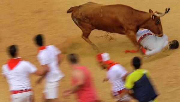 С начала июля в Испании быки насмерть забодали 7 человек во время праздничных забегов