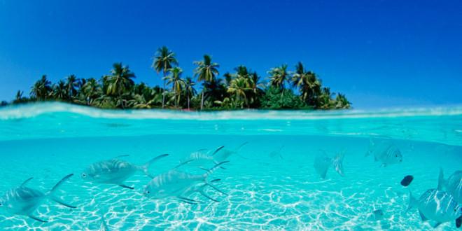 Как дёшево отдохнуть на Мальдивах